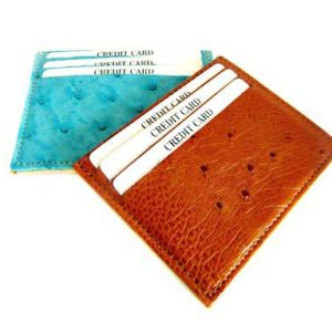 Ostrich skin credit card holder